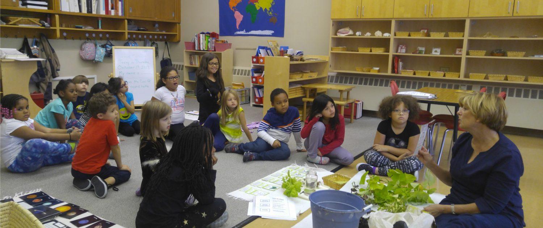 PreSchool In Blue Island, Montessori School Near Oak Lawn